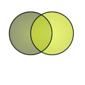 Green Venn Diagram